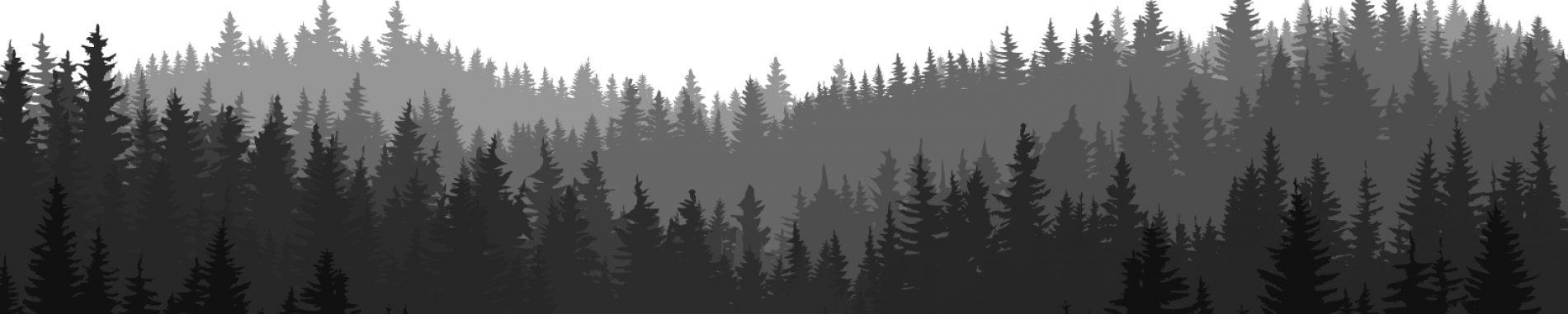 bg_bosque